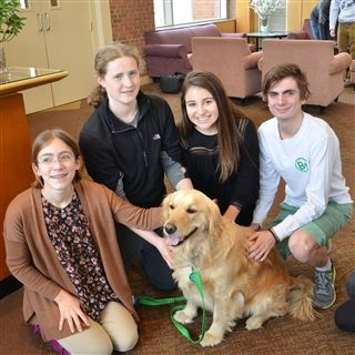 Pets Relieve Exam Stress Of Students