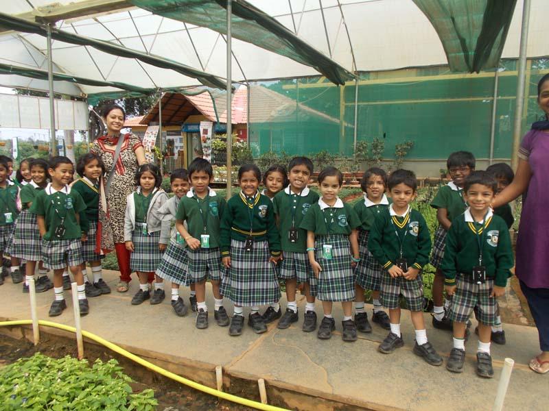 UKG Field Trip to Plant Nursery 008