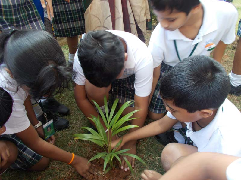 essay on independence day celebrations in your school Essays letter of description this is a sample letter of description to your friend describing how the last independence day was celebrated in your school : from : we celebrated the independence day in our school on 15th august 2008.