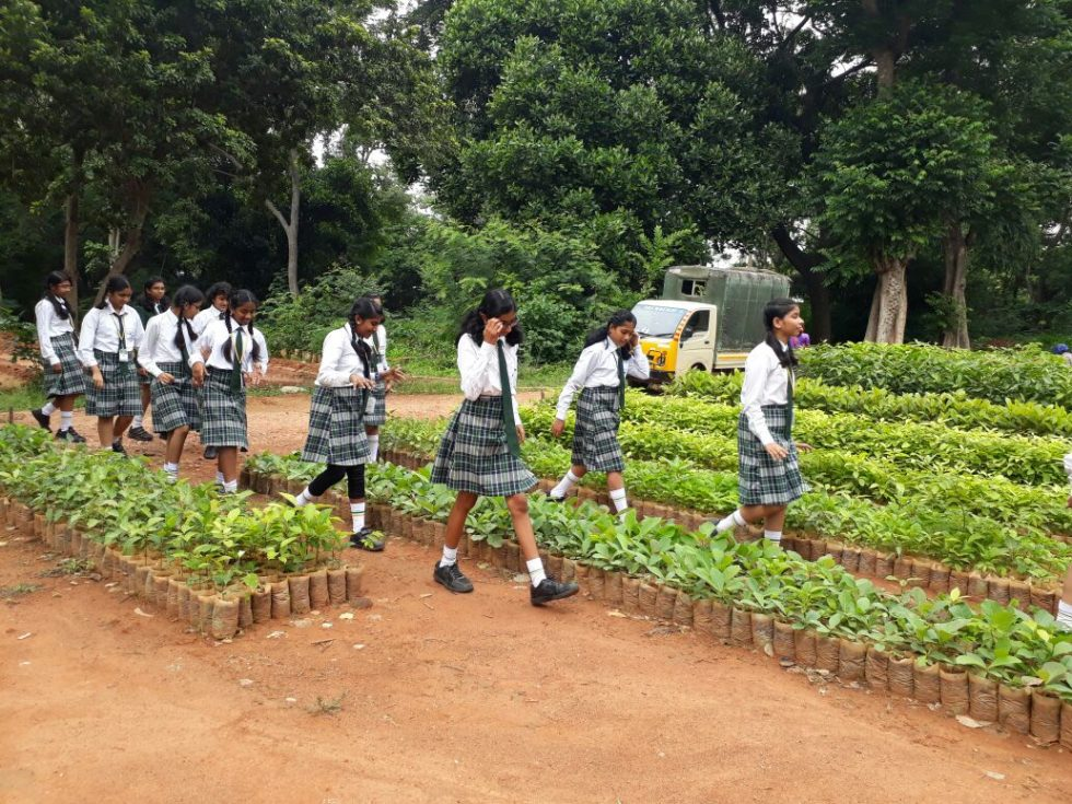 VSE Field Trip To Forest Department2