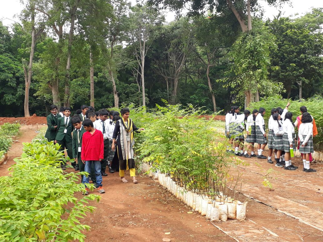 field trip to forest department