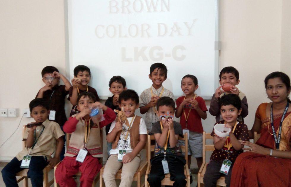 brown-color-day@vse12